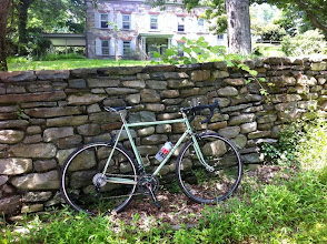Photo: Gene's green Ellis, blending into the countryside.