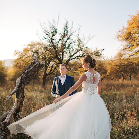 Wedding photographer Oleg Oparanyuk (Oparanyuk). Photo of 06.11.2016