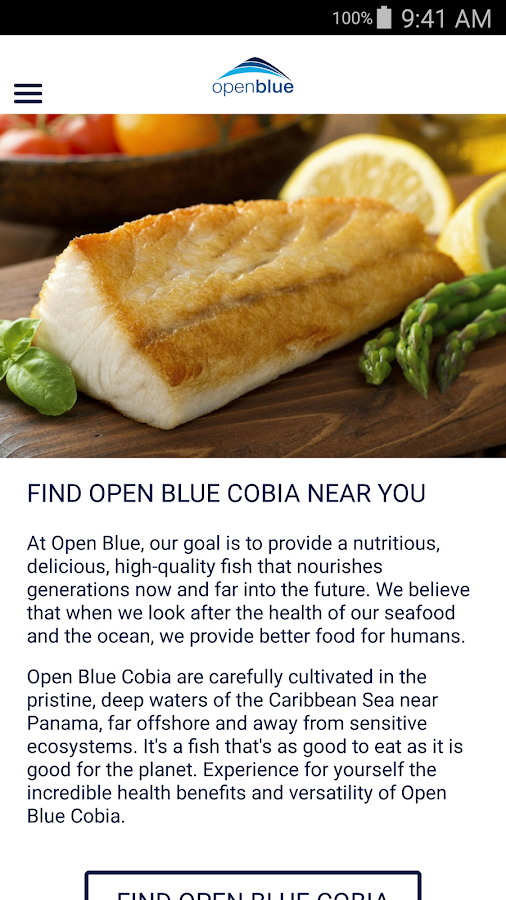 Open Blue Cobia- screenshot