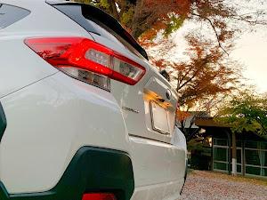 XV GT7 のカスタム事例画像 X'vehicleさんの2019年12月09日21:25の投稿