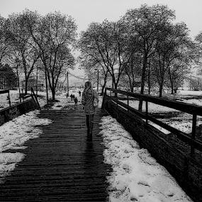 by Dalibor Davidovic - City,  Street & Park  Street Scenes (  )