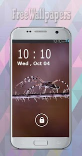 Spider Wallpapers Free - náhled