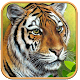 Tiger Simulator Free: Ultimate Tiger Hunting 3D (game)