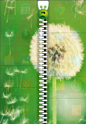 Flower Green Zip Lock Screen