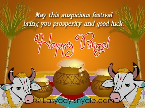 Download pongal greetings wishes apk latest version app for android pongal greetings wishes poster m4hsunfo
