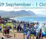Hermanus Whale Festival 2017 : Old Harbour, Hermanus
