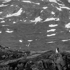 Wedding photographer Radek Kazmierczak (wildlight). Photo of 16.08.2017