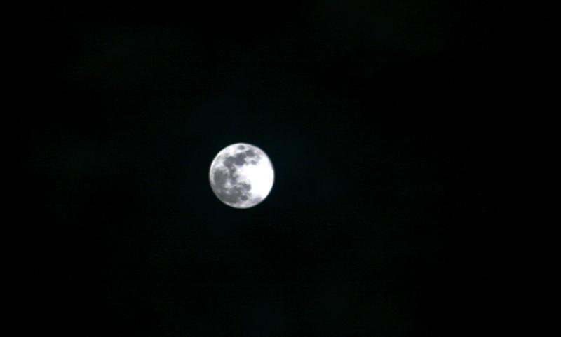 Photo: Bulan