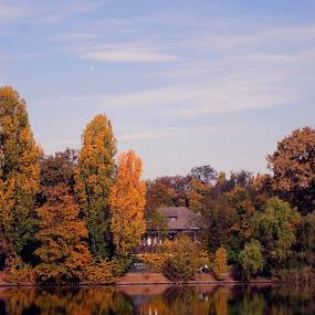 autumn in herastrau by Mihai Nita - City,  Street & Park  City Parks ( sky, trees, lake, autumn colors, water mirror, city park,  )