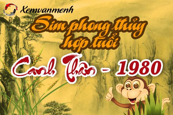 sim-phong-thuy-hop-tuoi-1980