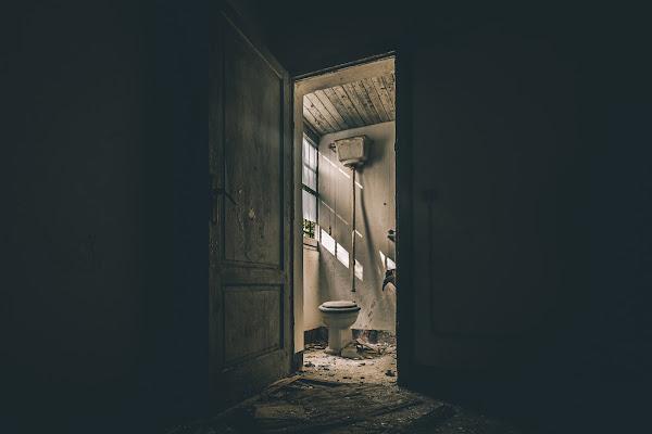 Che cesso di porta... Ah no, la porta del cesso.  di Alan_Gallo
