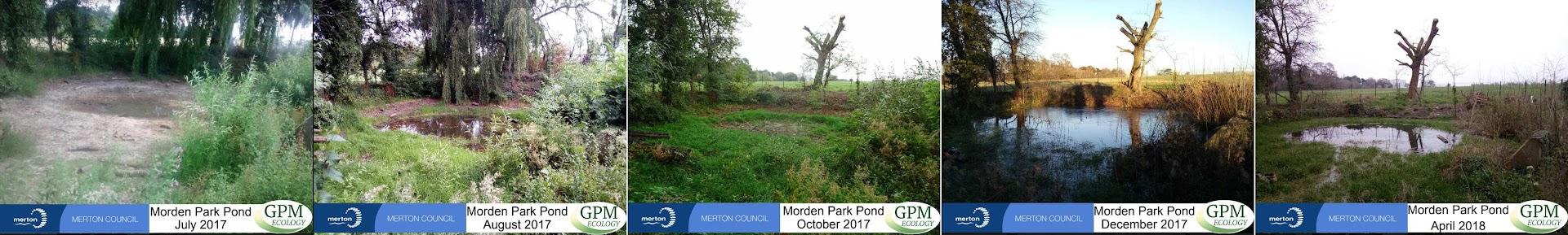 Morden Park Pond - Photo Log - PDF