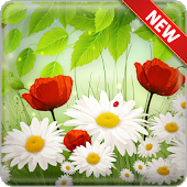 Spring Flowers Wallpapers Android APK Download Free By Modux Apps