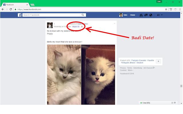 Badí' Calendar - Helper for Facebook