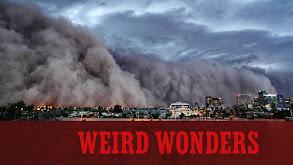Weird Wonders thumbnail