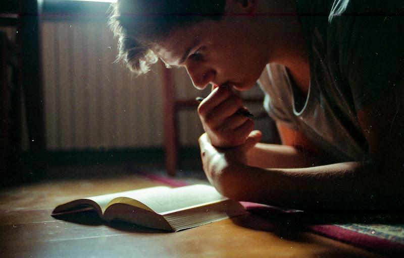 pagine e polvere di Flavia Scagni
