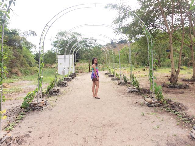 Lubong Nanguloan Falls 2