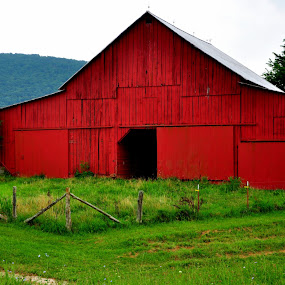 by Emily Vickers - Buildings & Architecture Other Exteriors ( farm, ranch, shed, fence, mountains, post, red, barn, exterior, buildings, architecture, farming )