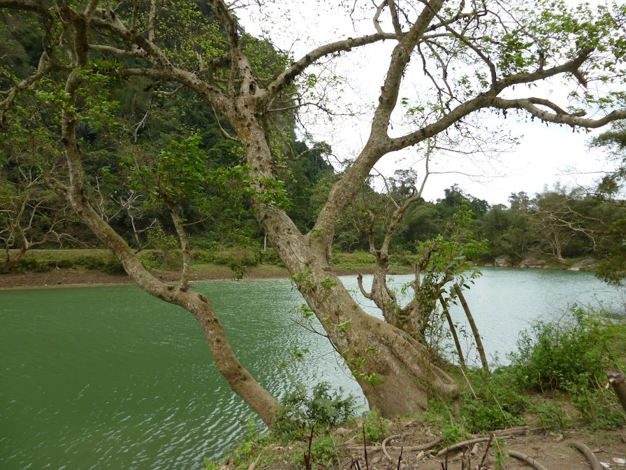 bờ sông Năng hoang vắng