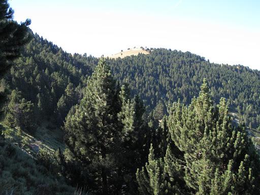Puig de les Tres Esteles