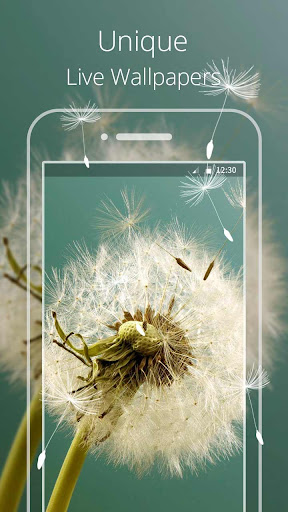HD Dandelion Live wallpaper|玩個人化App免費|玩APPs