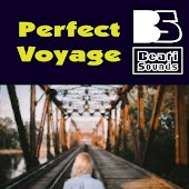 Perfect Voyage