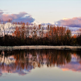 Lavender & Pink Reflections by Kathy Woods Booth - Landscapes Waterscapes ( michigan, waterscape, sunset, reflections, dusk )