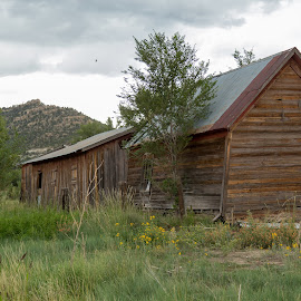 Dawson Mining Camp by Robert Graham - Buildings & Architecture Decaying & Abandoned ( old building, rural, dawson, mining, new mexico, mining town )