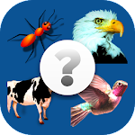 Guess The Animal, Guessing Game icon