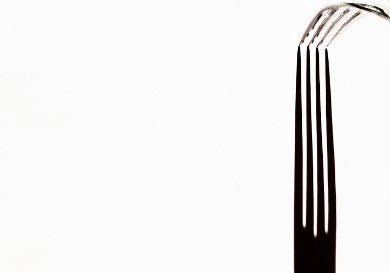 Rebbi in silhouette  di Francesca Zaia
