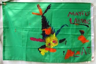 Photo: Kids made flags to decorate the tents. This was one of my favorites. It's very much a Heptagenid mayfly.