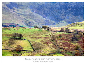 Photo: Low Rigg in Autumn  The overcast light was great for photographing the surrounding fells too while I was at Castlerigg Stone Circle. While I was here it struck me that The lake District is a completely different colour to the Yorkshire Dales where I have photographed more often.  Canon EOS 5D MkII,EF70-200mm f/4L USM at 200mm, ISO 100, 1/6s at f22