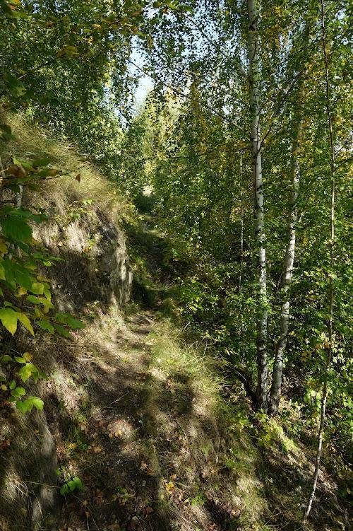 можете покрасить чимбулатский ботанико геологический комплекс фото просто