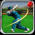 Cricket t20 2018
