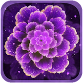 Purple Flower Live Wallpaper