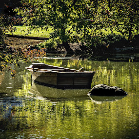Peaceful waters by Ramone Pearson - Landscapes Waterscapes ( calgon moment, small boat, peaceful, peaceful escape, calming, anderson japanese garden, chicagoland digit photography, calming water, trees, between a rock and a peaceful place, pond, rockford )