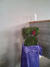 Photo: Tweede advent