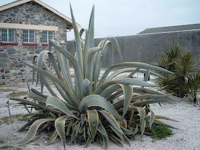 Photo: Robben Island