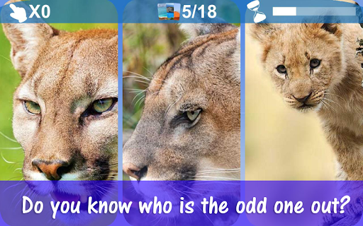 Touch the Odd One Out android2mod screenshots 4