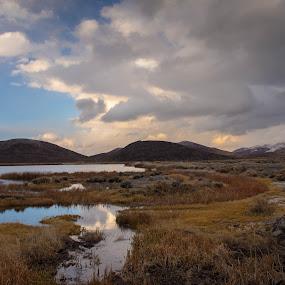 Veterans Parkway Watershed by John Shelton - Landscapes Deserts ( clouds, water, desert, winter, reno, wetlands, nevada )