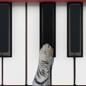 猫ピアノ icon