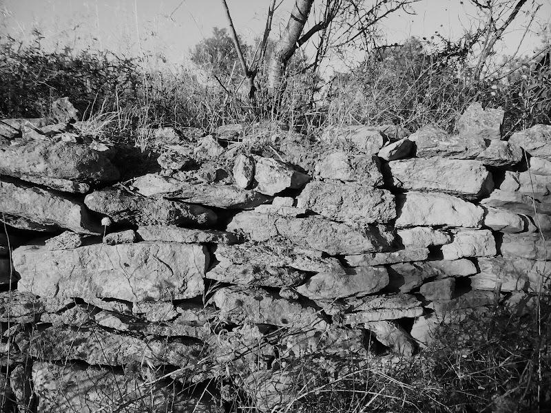 Muri contrastanti di S_mile