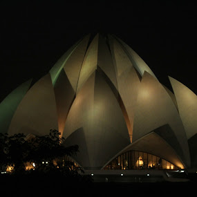 lotus temple by PraNay Mallick - Buildings & Architecture Statues & Monuments ( temple, lotus, peaceful, monument, worship, heritage )