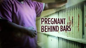 Pregnant Behind Bars thumbnail