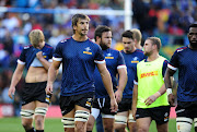 The DHL Stormers have been unlucky with injuries to key players this season.