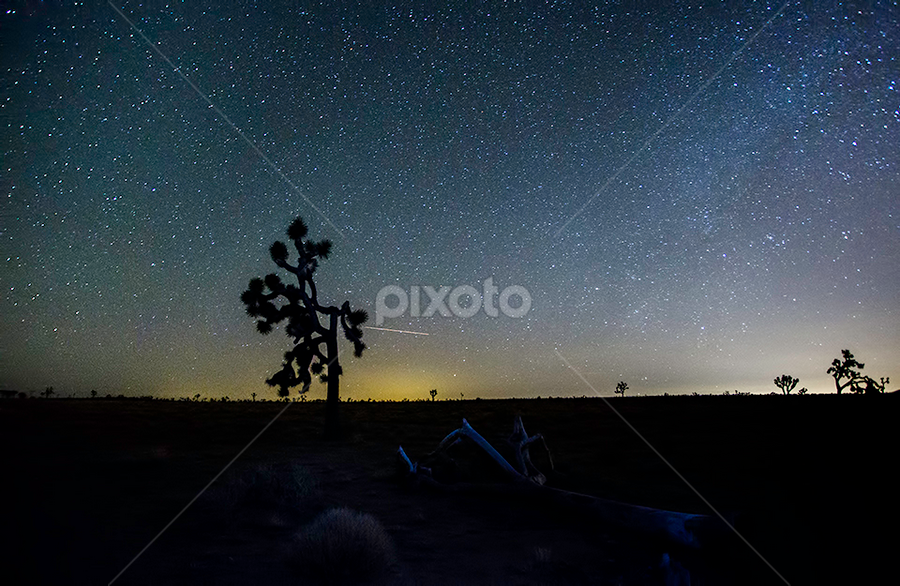 Night at the Dessert by Jerome Obille - Landscapes Starscapes ( silhuette, stars, landscape, dessert, nightscape )