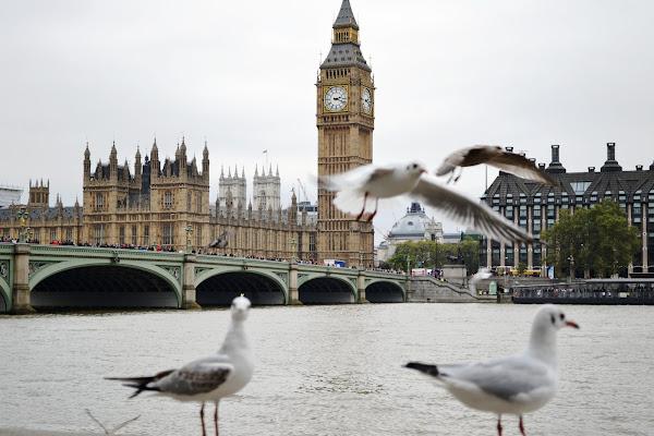 Londra di Samyna