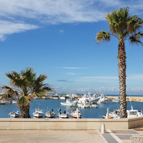 A touch of sun! by My 1st Impressions - Landscapes Travel ( boats, sicilia, harbour, sea, italy, palms, sicily, porto )