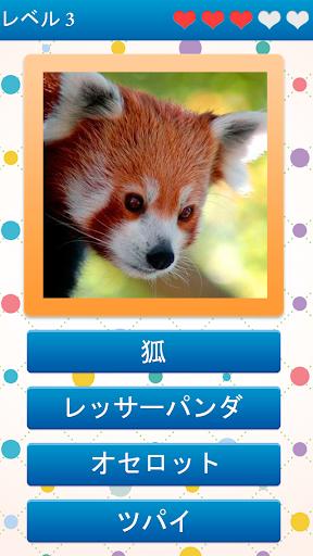 動物の名前は何ですか?