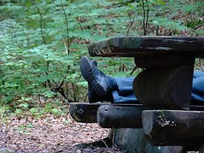 Photo: Znalezione w lesie :)